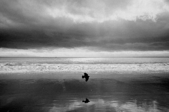 Wales Beach, 2011